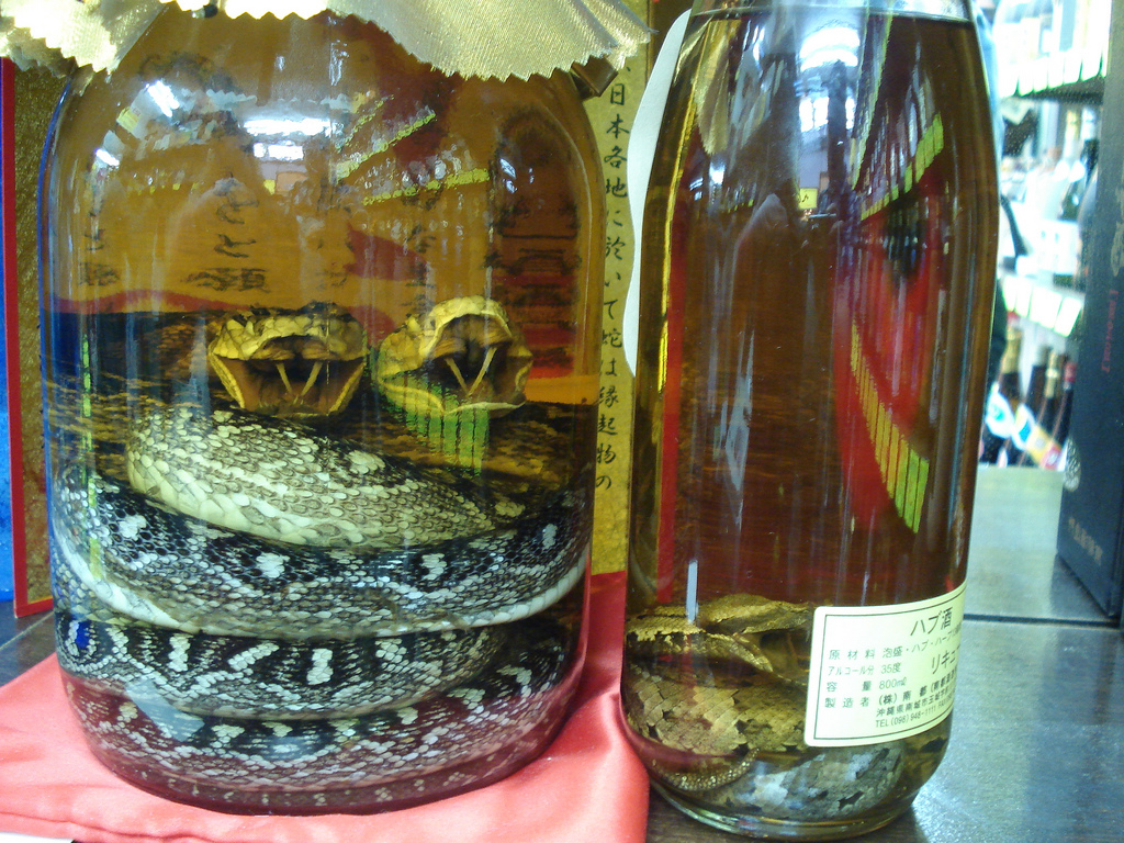 Or two in the bottle typically highly venomous snakes like cobras
