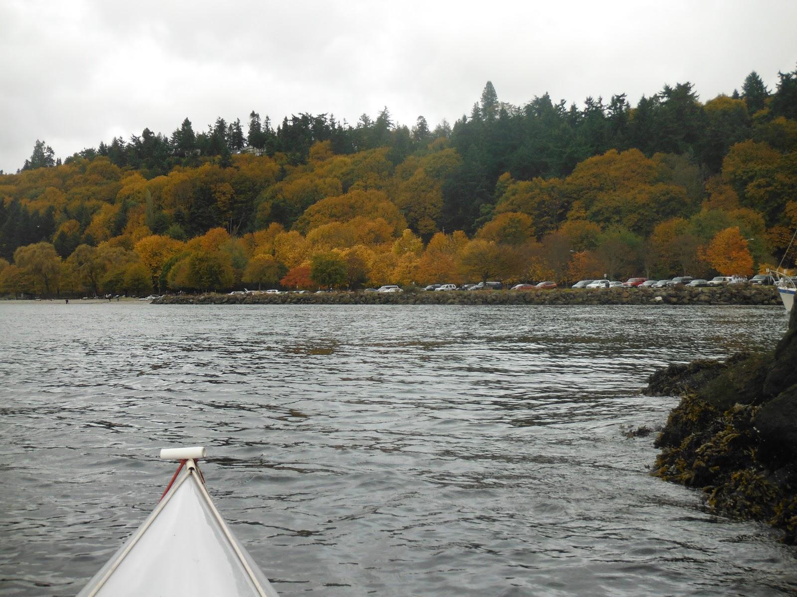 Pacific Northwest Seasons: Kayaking Seattle: Golden Gardens to West ...