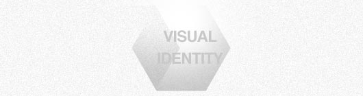 Understanding of Visual Identity System
