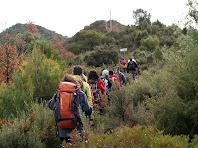 Apropant-nos al trencall on es separen els camins al Puigsoler Petit i al Puigsoler