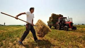 Εγκατάσταση Νέων γεωργών στην Κορινθία