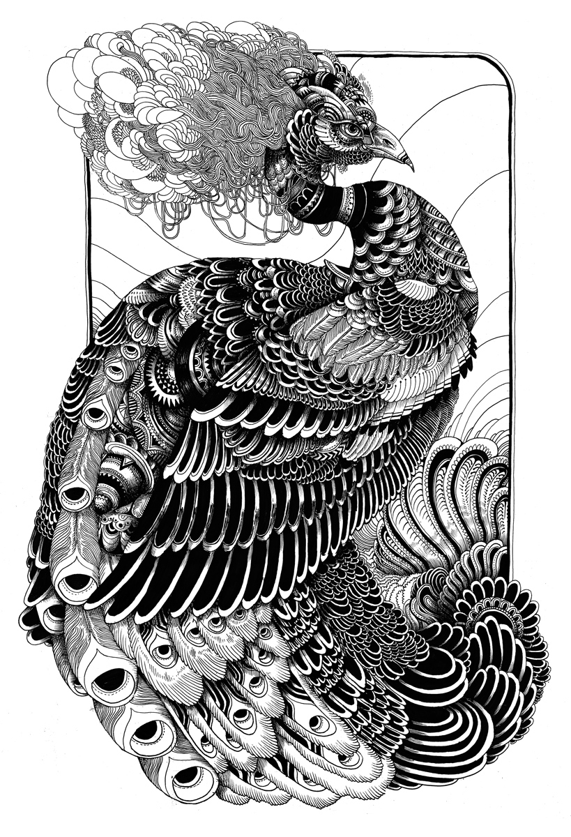 Line Drawing Of Peacock : The helpful art teacher rhythmic line designs and patterns