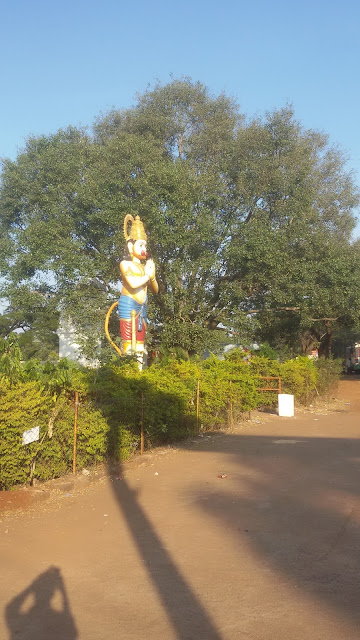 Sunflowers and green fields Ananthagiri Hills Vikarabad Trip Hyderabad weekend getaway