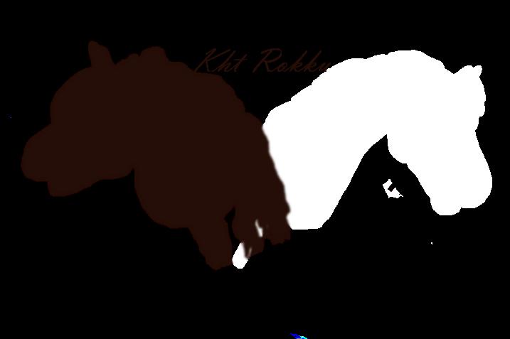 Kht Rokku