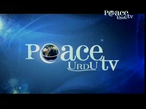 peace tv urdu live