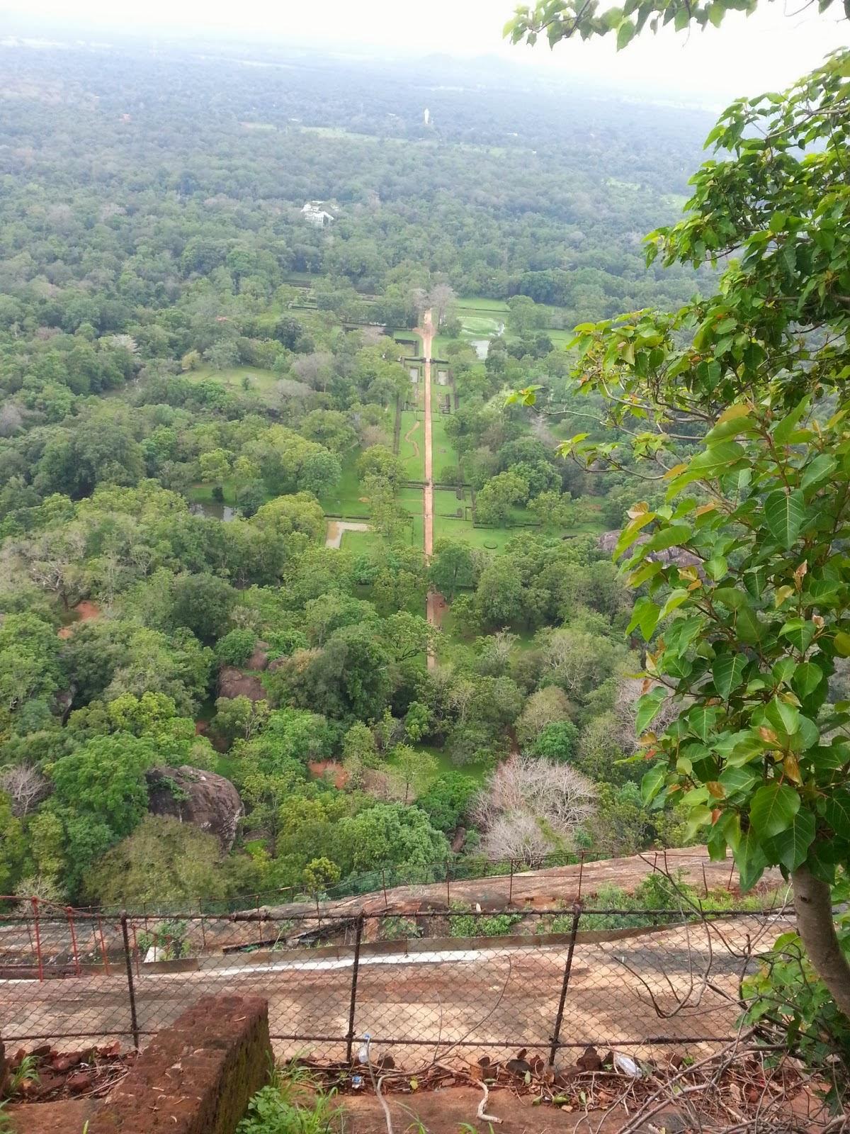 Вид с вершины Сигирии на водные сады и центральную дорогу, зеленые джунгли, статуя Будды