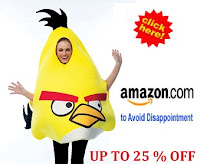 angry bird halloween costumes