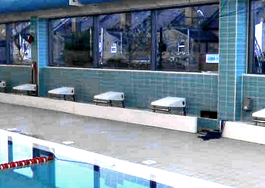 Gll better focus on swimming for Pool design eltham