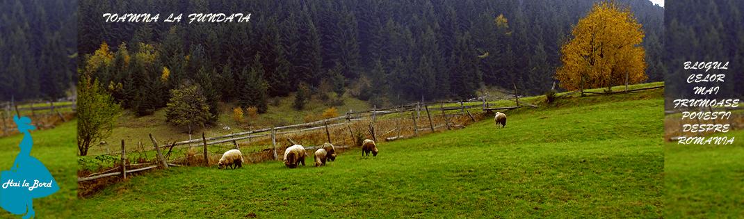 Hai la Bord! - Blogul celor mai frumoase povesti despre Romania