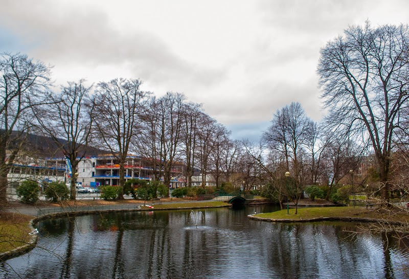 picture of a pond in nygardsparken park in bergen