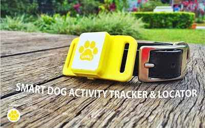 Must Have Gadgets For Dog Owners (15) 2