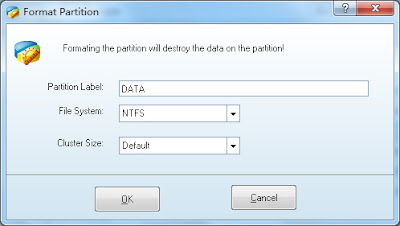MiniTool Partition Wizard Home and Professional Edition 8.0 - Format Partition