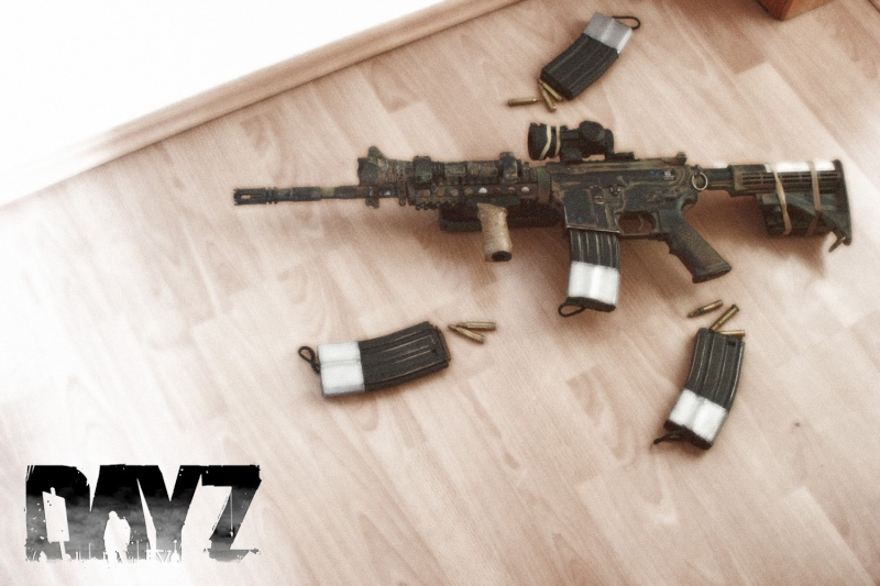 how to go to exp on dayz