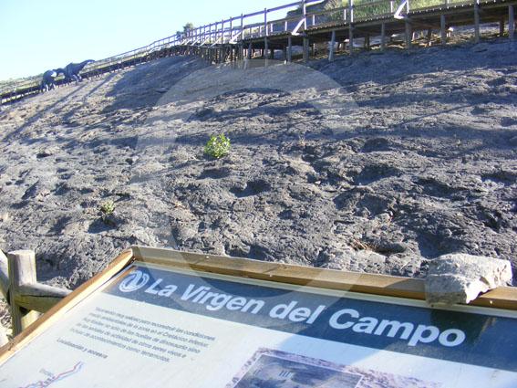 yacimientos Enciso La Rioja