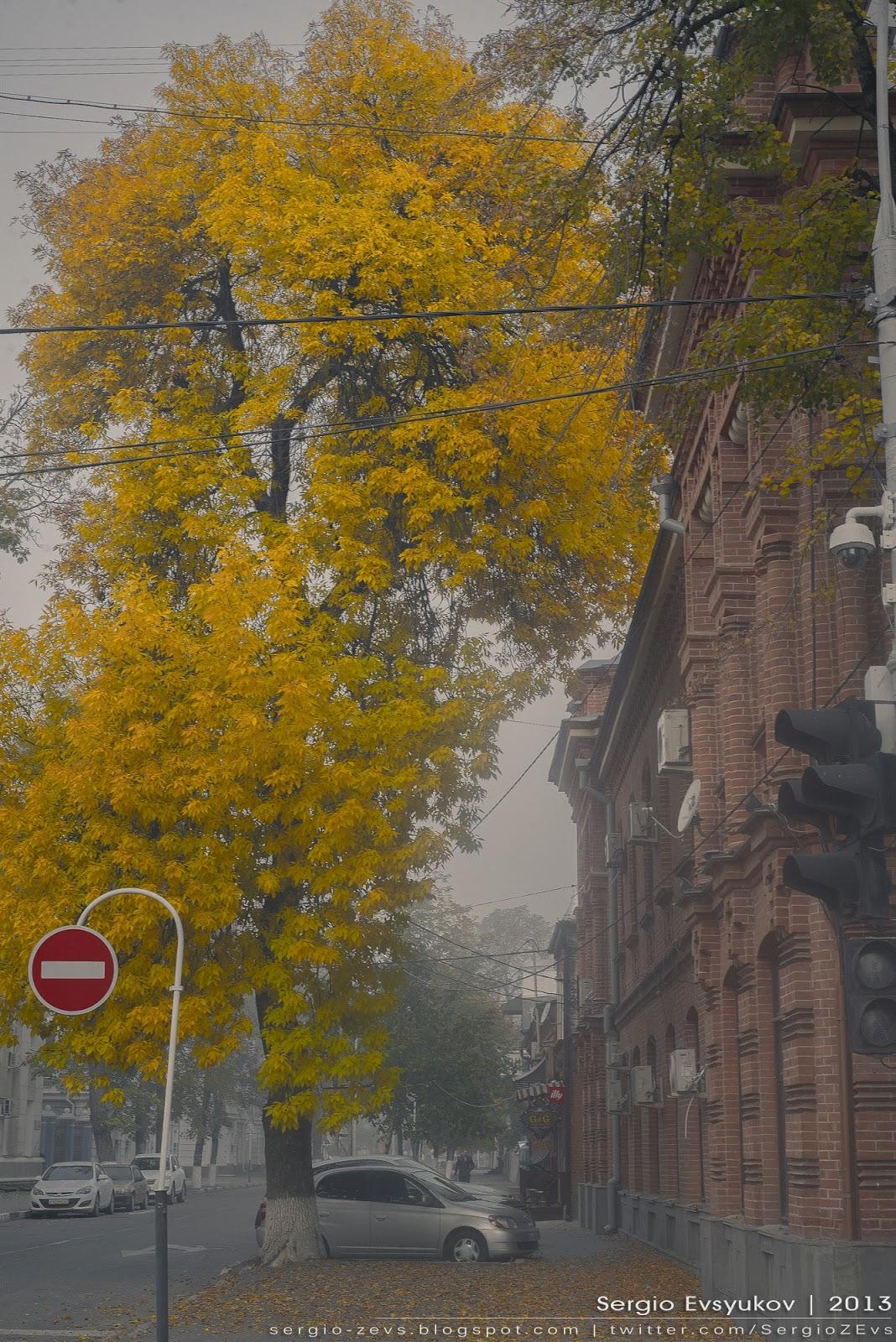 Fog in Krasnodar