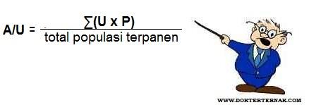 Rumus untuk menghitung Rata-rata umur ayam saat panen (A/U)
