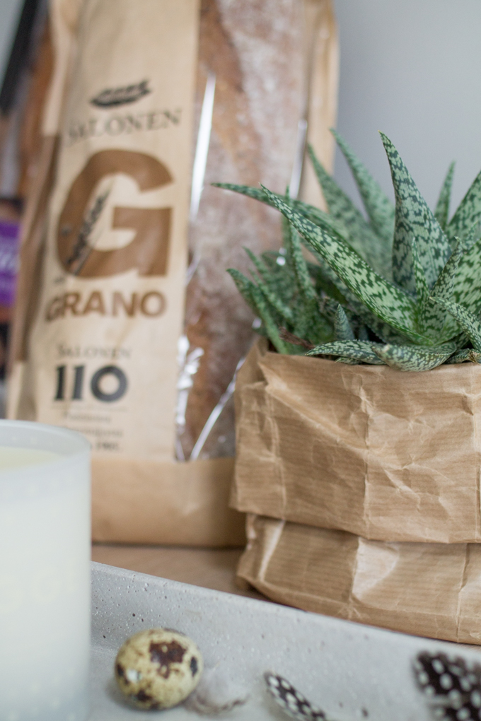 diy paperbag aloe