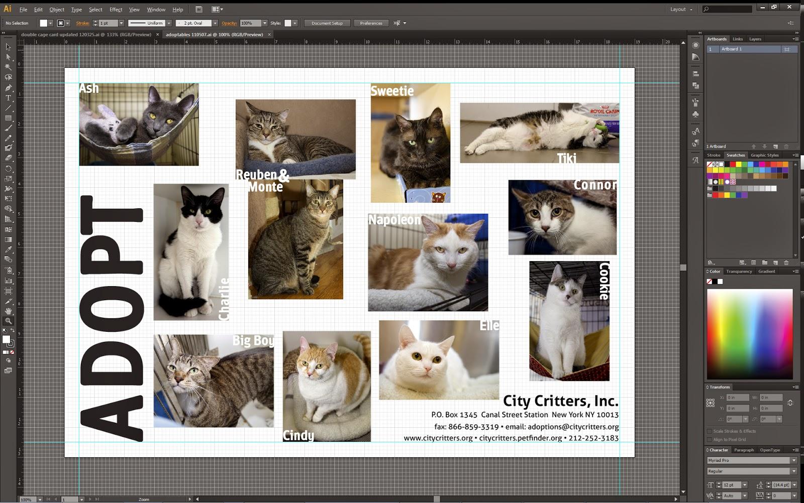 Download Adobe Illustrator CS6 + Crack