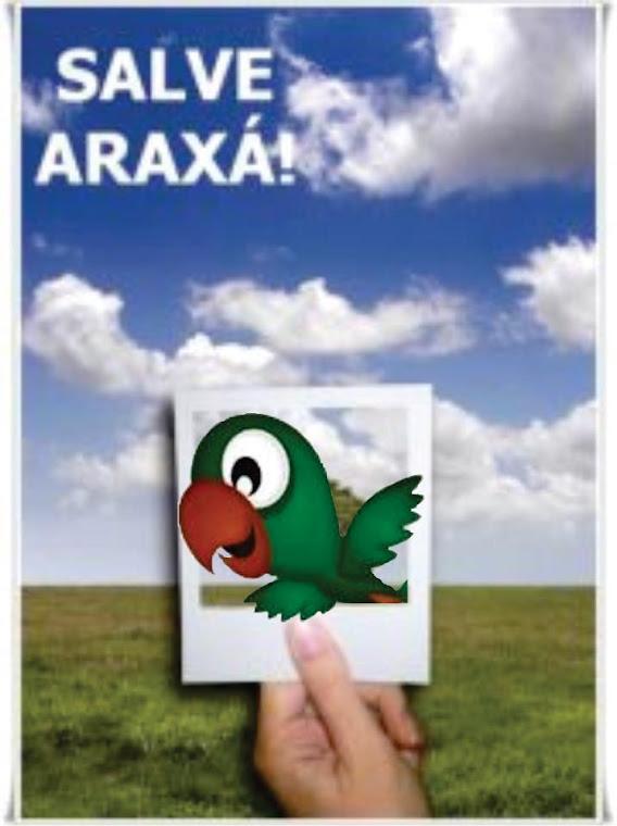 SALVE ARAXÁ