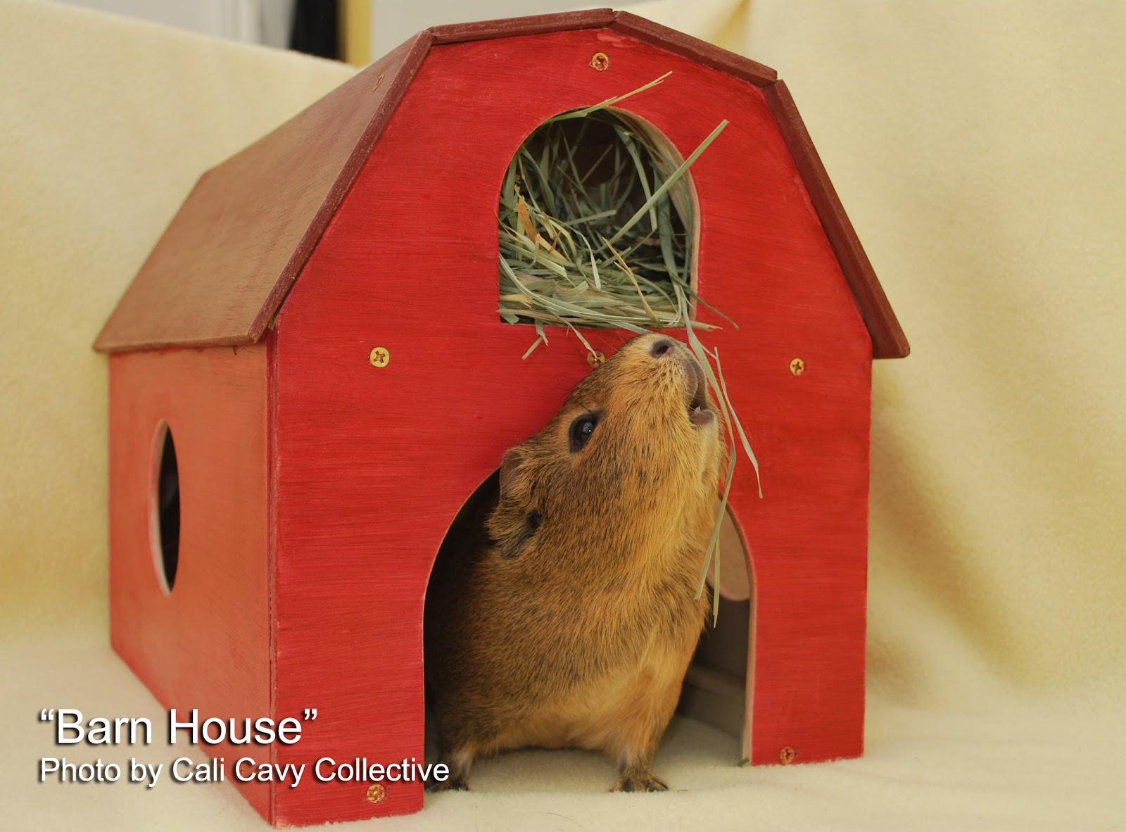 how to make a guinea pig hutch