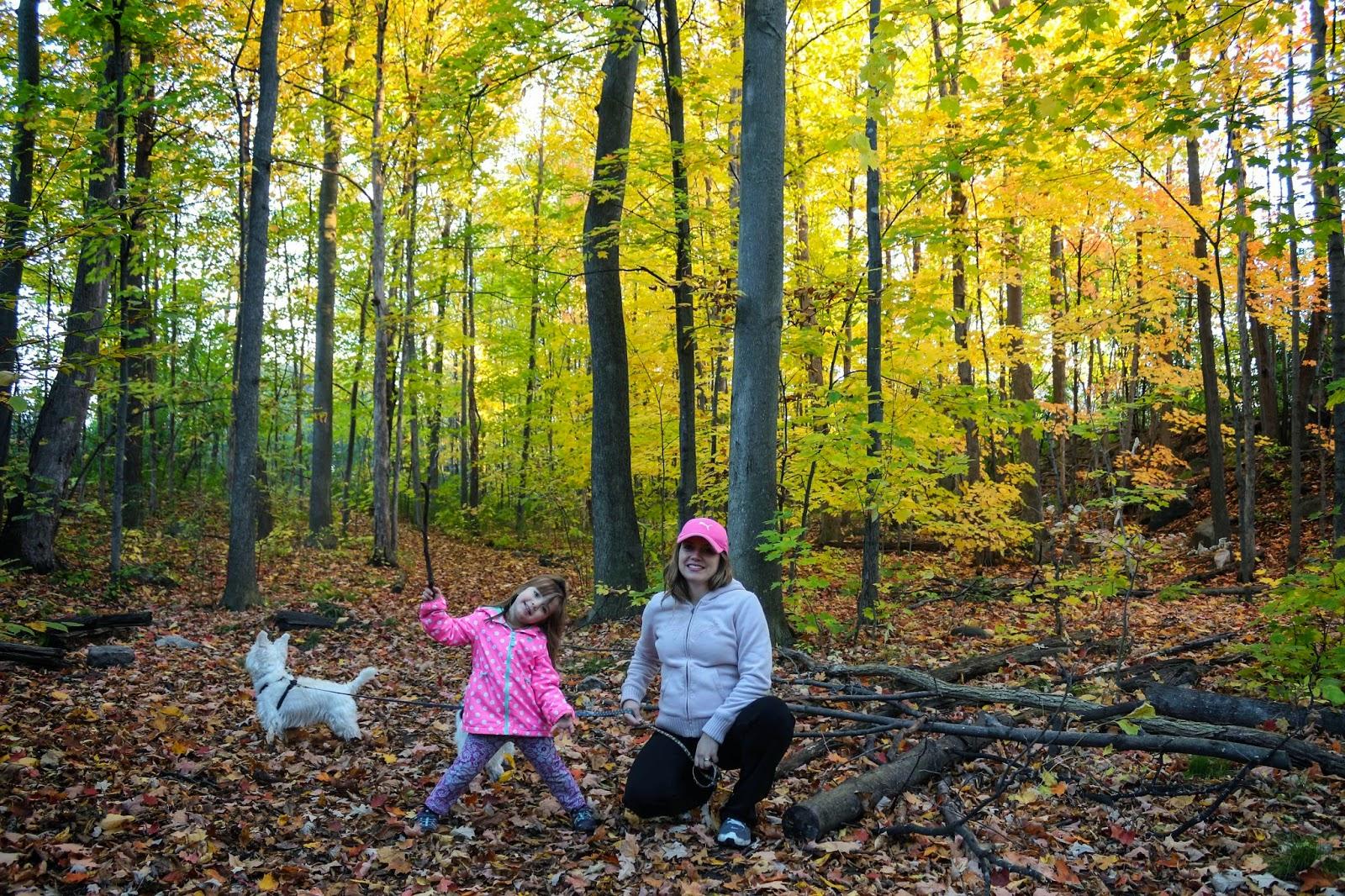Fall Ottawa Canada 2014