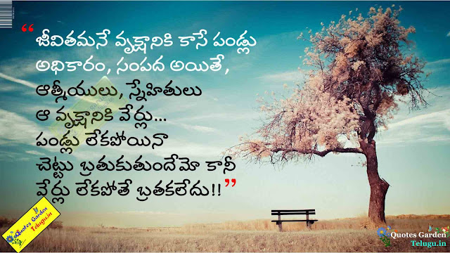 Best friendship quotes in telugu 794