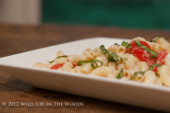... Woman's Spicy Pasta Salad with Smoked Gouda, Tomatoes and Basil