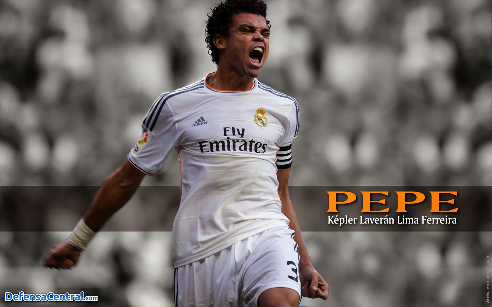 Pepe Real Madrid Wallpaper HD 2014
