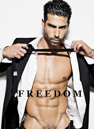 FREEDOM THE BOOK, DOWNLOAD FOR I - PAD HERE!