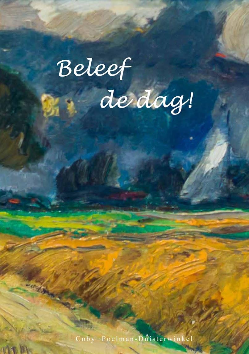 Boeken verkrijgbaar via bol.com en via cobytjeert@live.nl