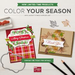 Aug Colour Your Season