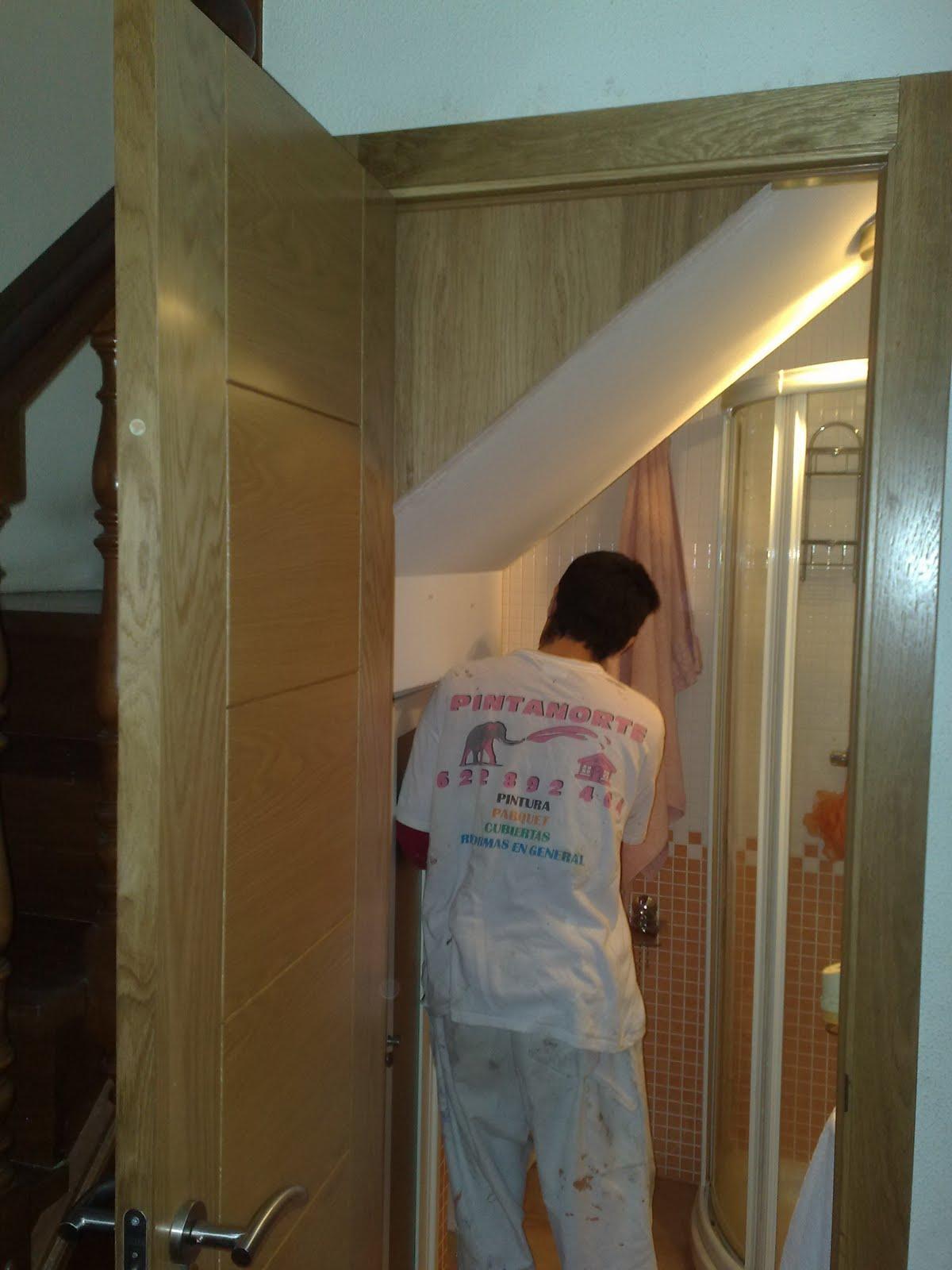 Ba o bajo escaleras aprovechamiento del hueco for Bano debajo escalera diseno