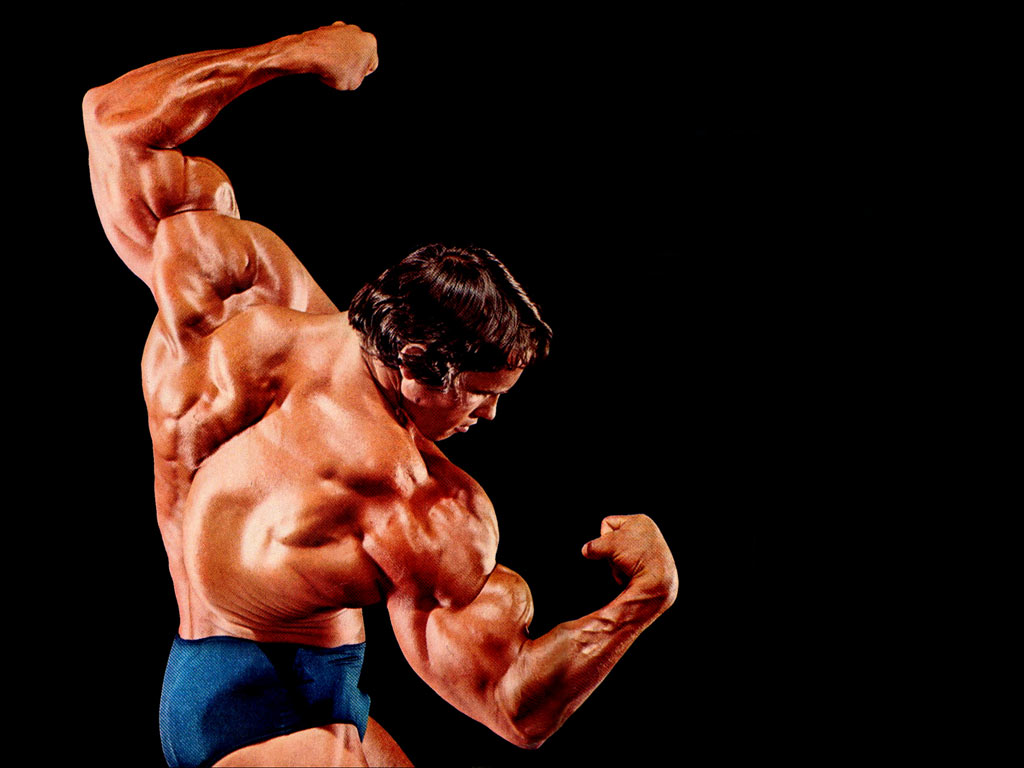 The wallpapers arnold schwarzenegger for Classic builders