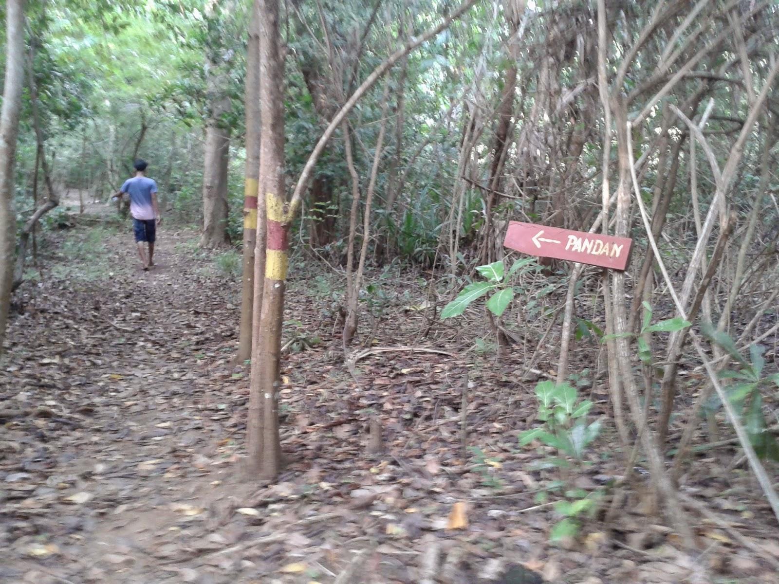 Akses jalan Tracking Ujung Batulawang, Karimunjawa