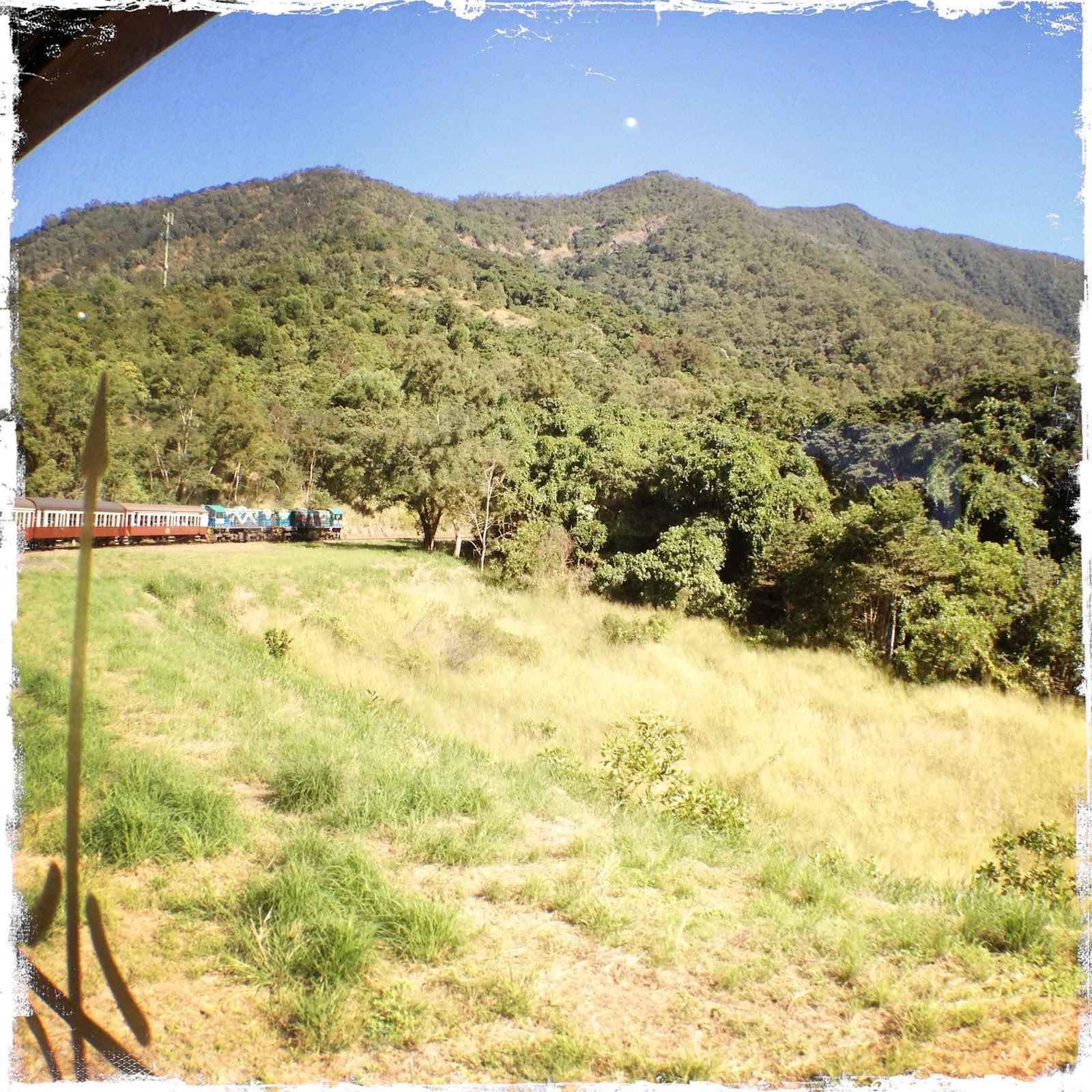 gullrushet i california