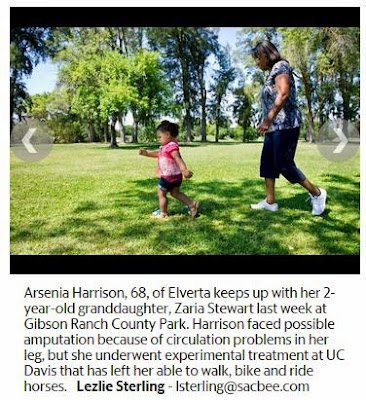 UC Davis Stem Cell Program Cited in Sacramento Bee