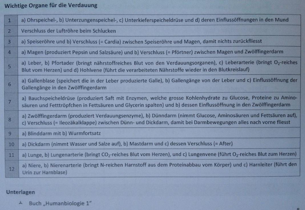 Auftrag 6 - Makroskopische Darstellung der Verdauungsorgane ...