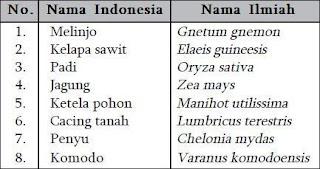 Contoh Nama Ilmiah Tumbuhan dan Hewan