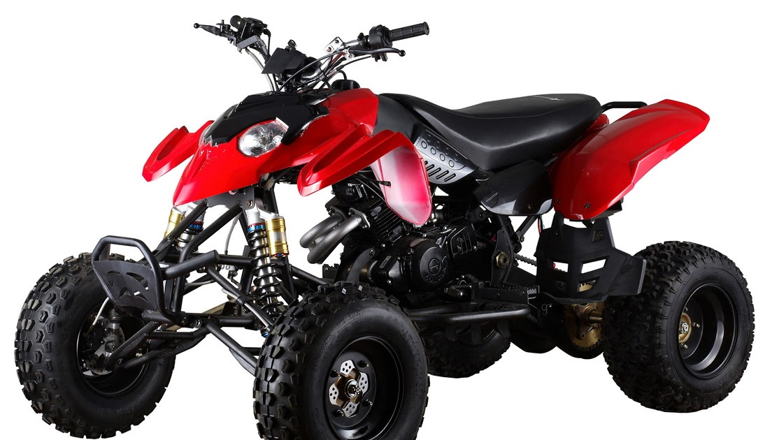 Bike quad bike for Do you need a license for a motorized bicycle