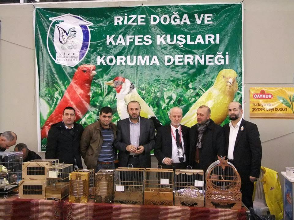 İzmir Yarışması 2013