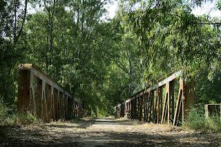 Puente de hierro. (mayo 2009)