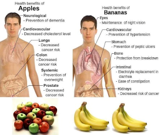 Health Benefits of Apples and Bananas - Yogesh Goel - ygoel.com