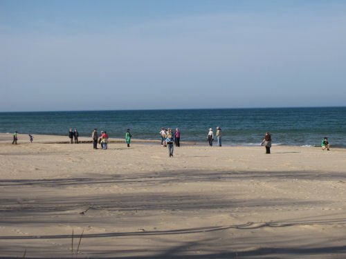 hikers on beach