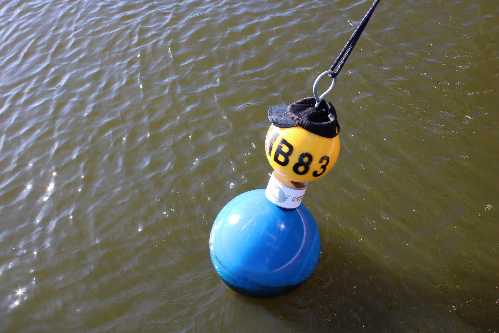 Marboeien op 't Lauwersmeer