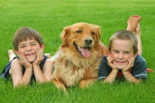 Jak przygotować dziecko na pojawienie się psa w domu