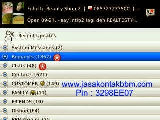 Jasa-Promite-Pin-Blackberry-Murah