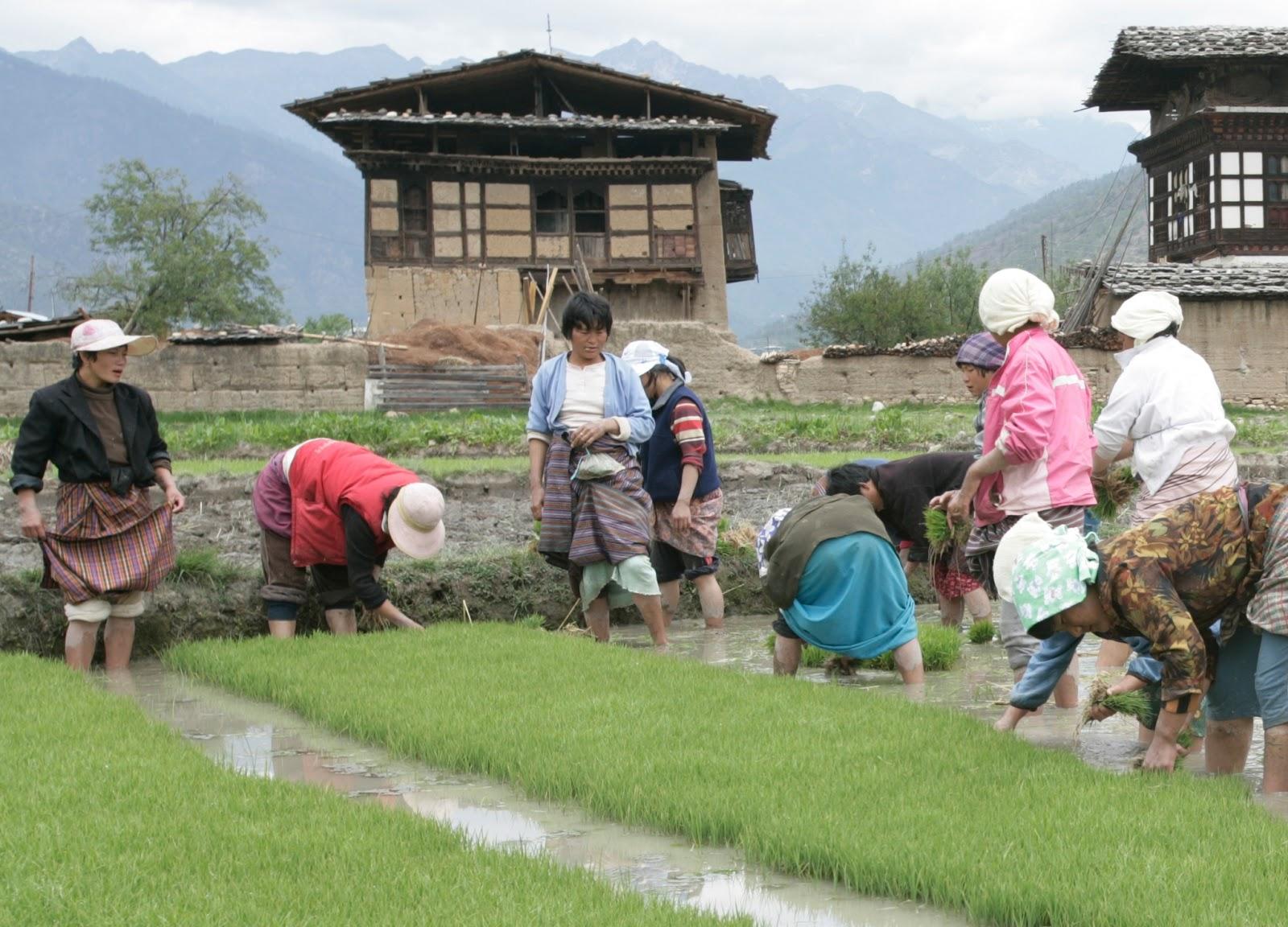 People Of Bhutan Bhutanese Where Is BHUTAN - Where is bhutan