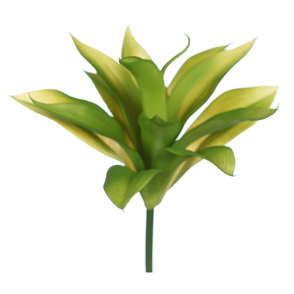 Plantas crasas artificiales decoraci n con plantas - Plantas artificiales ...