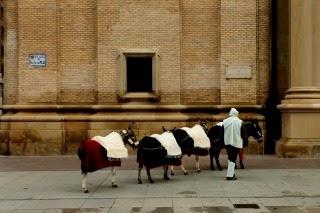 VII  Muestra Nvideña de Zaragoza.