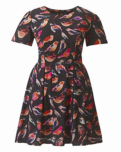 Simply Be Bird Print Doll Dress